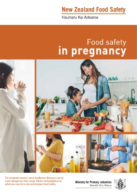 Food Safety in Pregnancy