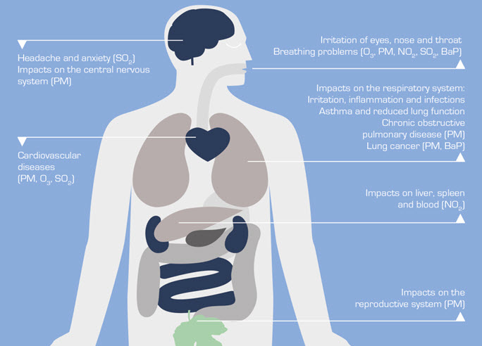 Examples of the health effects of air pollution. Source: Ministry for the Environment.