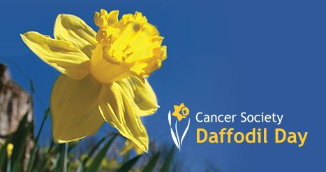 Cancer Society Daffodil Day.